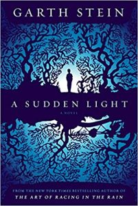 halloween book garth stein a sudden light