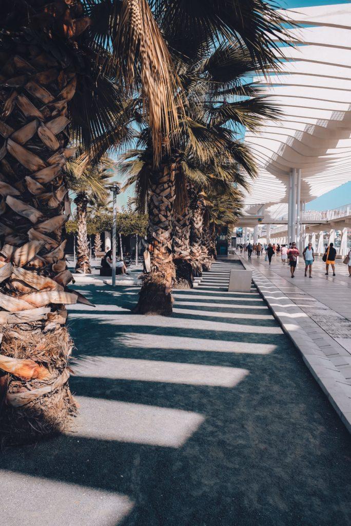 Seafront promenade in the center of Malaga.