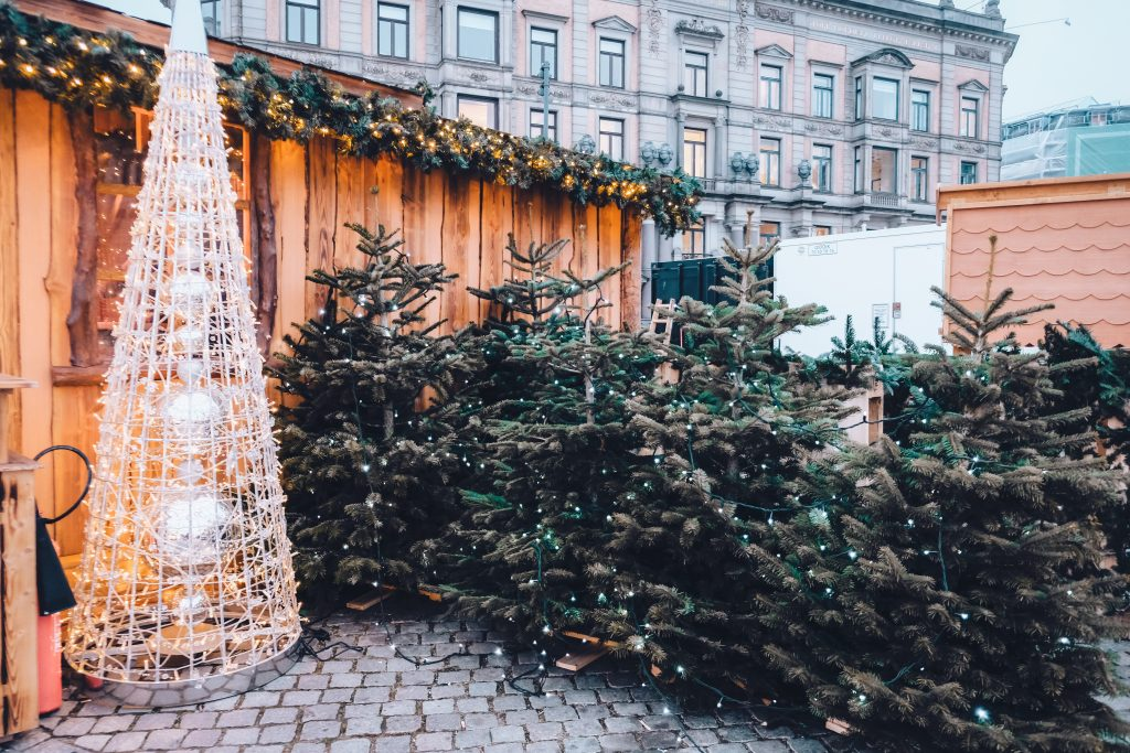 Højbro Plads Christmas trees