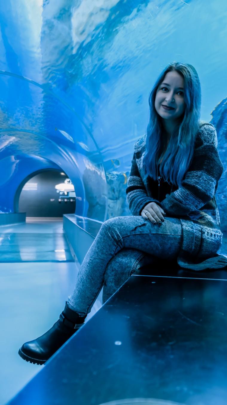 aquarium copenhagen underwater tunnel