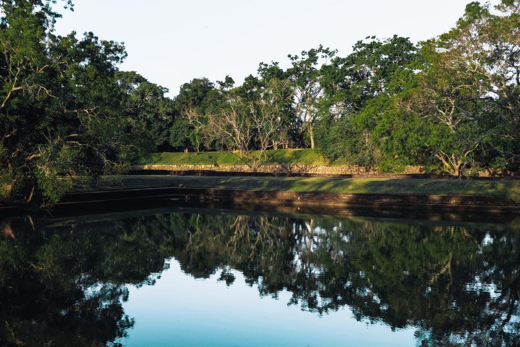 lake at lion rock bottom gardens