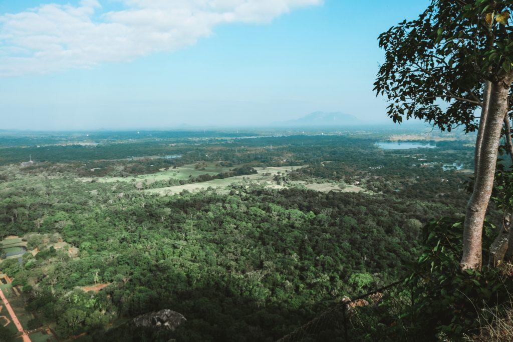 hiking in sigiriya view