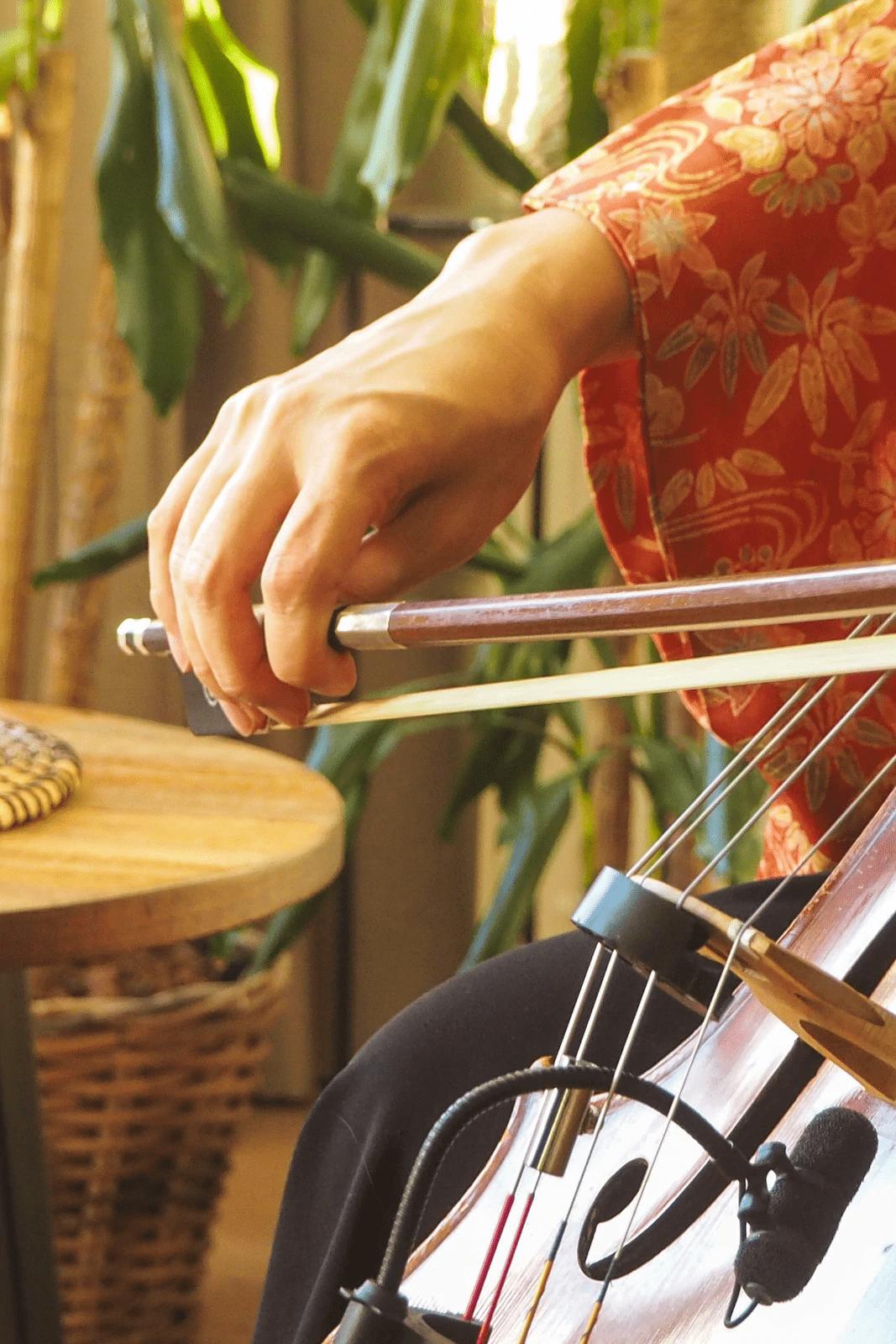 cello meditation cultural concert online cultural experience