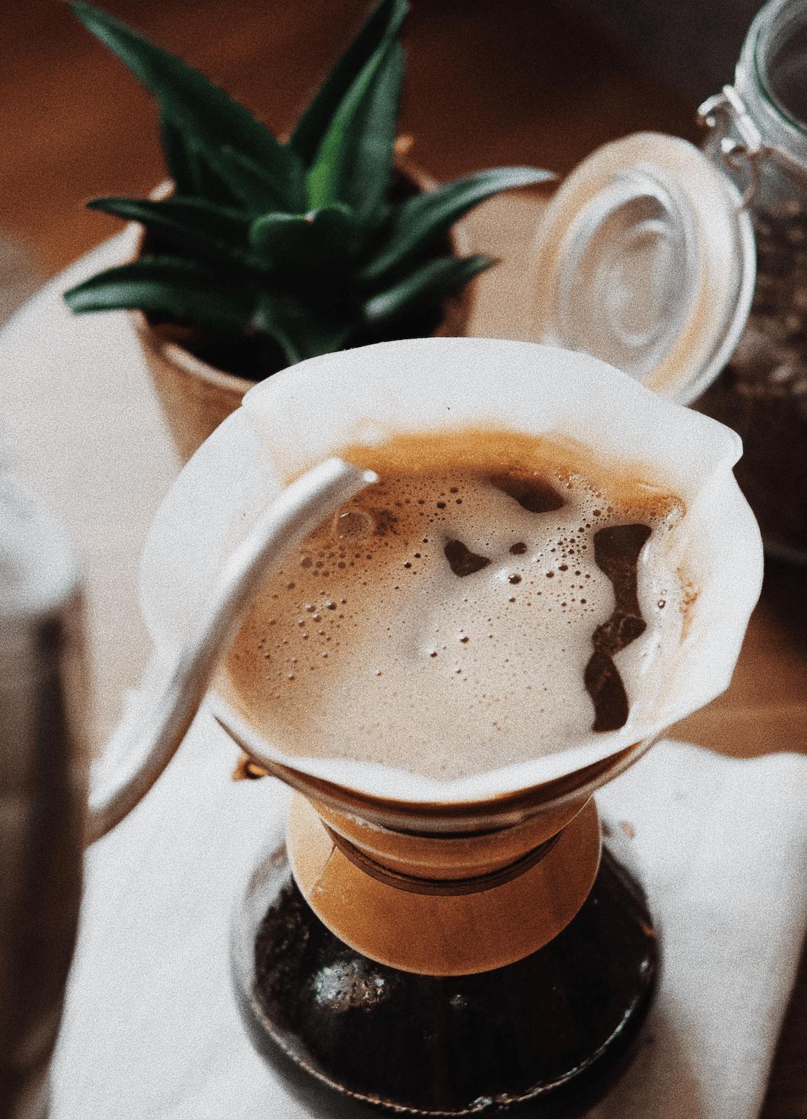 coffee masterclass experience online