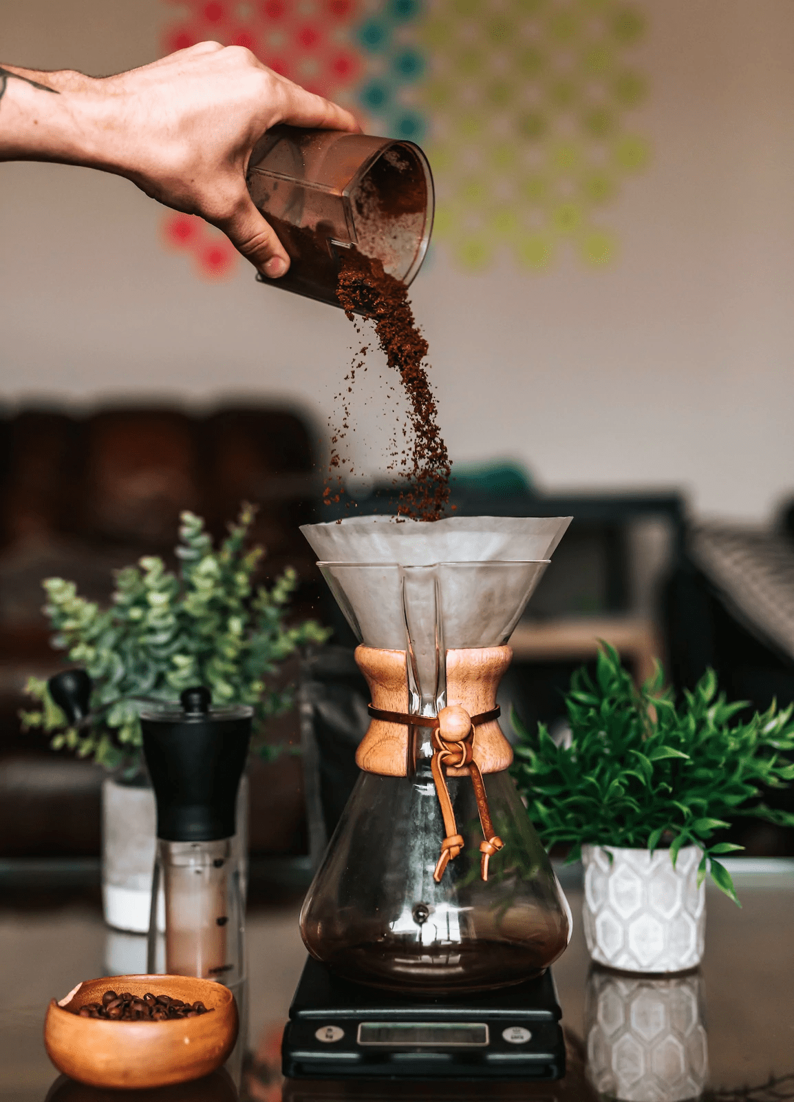 mexican coffee masterclass online