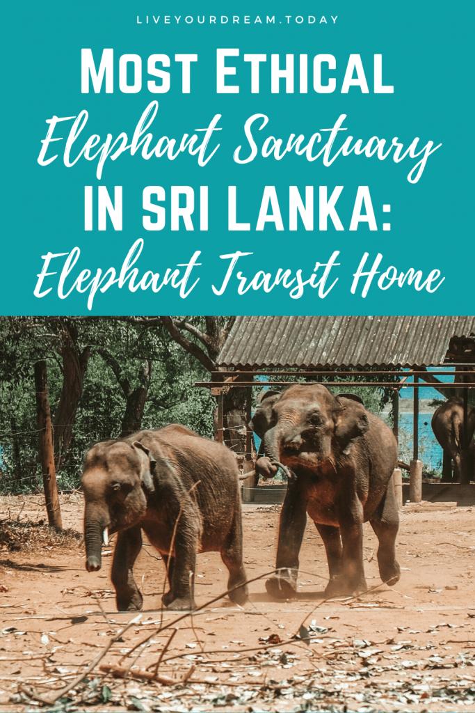 ethical elephant sanctuary sri lanka