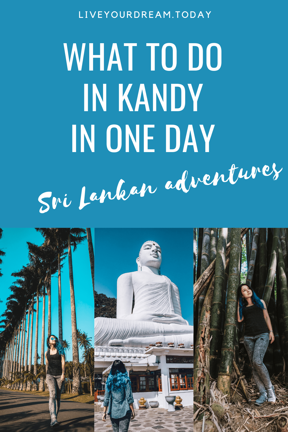 best things to do in kandy in one day