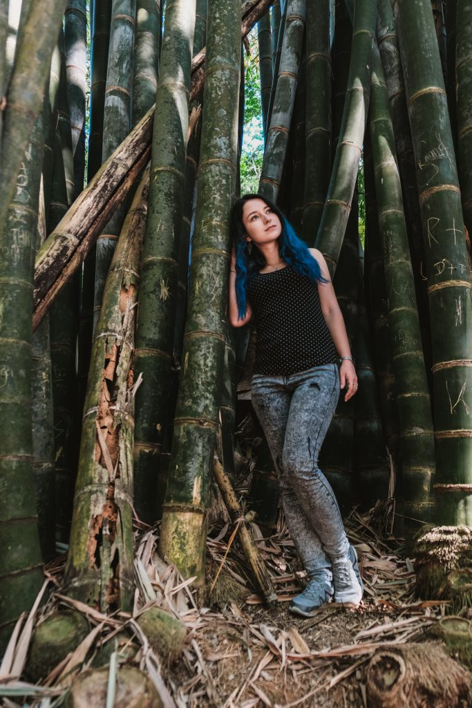 kandy botanical garden bamboo