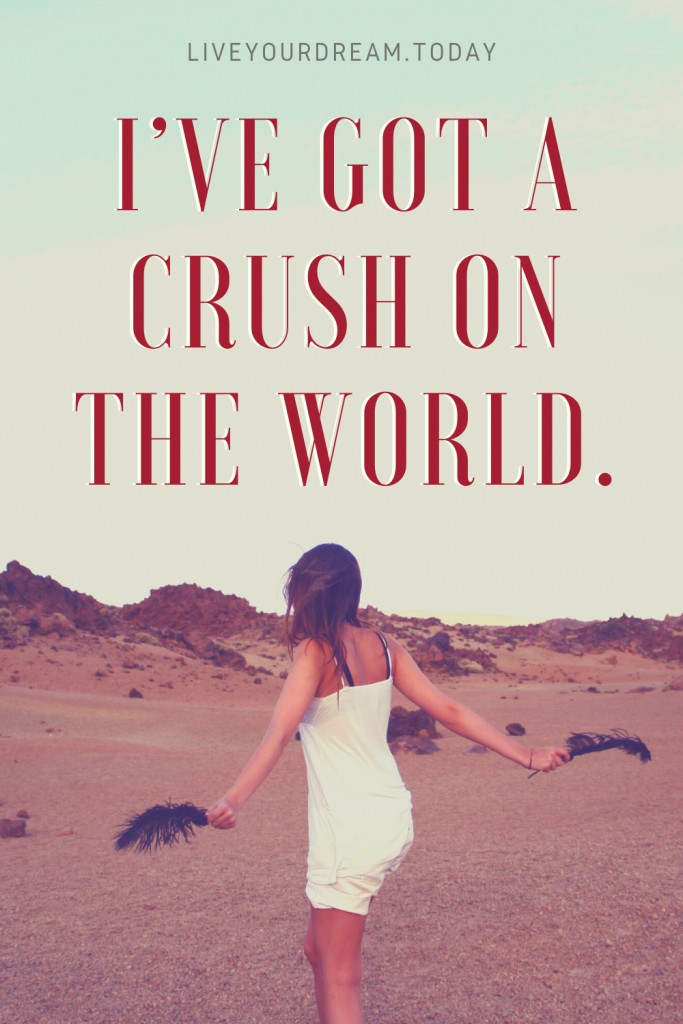 funny travel quote I've got a crush on the world